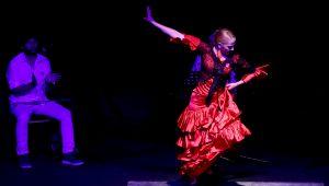 Flamenko Gösterileri Ankaralı Sanatseverleri Büyüledi