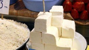 İnek peyniri ve kaymak üretiminde büyük cirolar