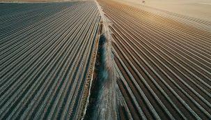 Tarım sektörü kesintisiz 10 çeyrektir büyüdü