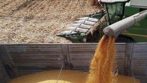 Yem sanayicileri buğday fiyatlarının belirlenmesini istiyor