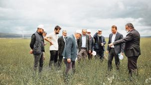 Pelemir bitkisi çiftçilere tanıtıldı