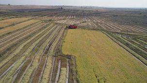 Salgın sürecinde tarıma artan ilgi traktör pazarını hareketlendirdi