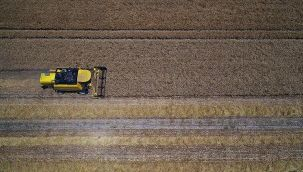 Tarım ÜFE haziranda arttı