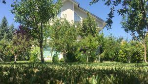Ankara İncek'te 30 adet ağaçların içerisinde satılık villa