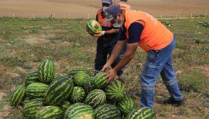 Gölbaşı'nda tarımsal üretime destekler artıyor
