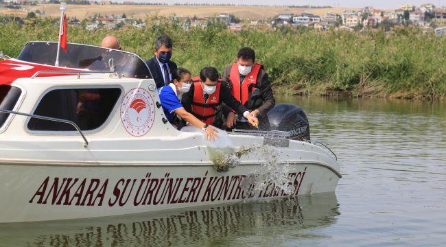 Mogan Gölü Balıklandırılıyor