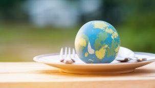 Dünyada üretilen gıdanın üçte biri israf ediliyor